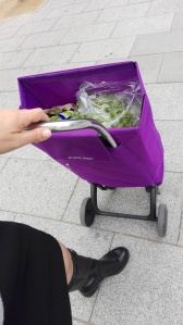purple-shopping-cart